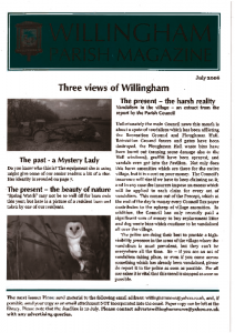 thumbnail of Willingham News 07Jul 2006